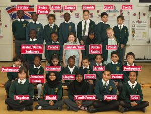 Some of the languages spoken at one Birmingham school (Source: Daily Mail)