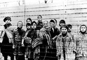 z17337575Q,Dzieci-w-Auschwitz--sfotografowane-zrobione-tuz-po